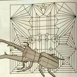 天牛手工折纸教程