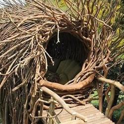 树枝DIY的超大鸟窝