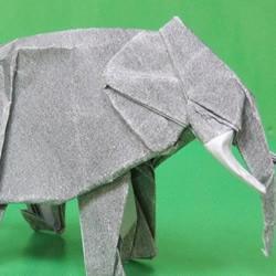 大象和三文鱼手工折纸