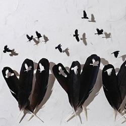 鸟儿羽毛艺术品手工制作