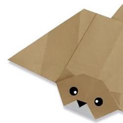 飞鼠折纸的手工制作方法