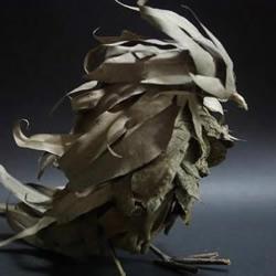 枯枝落叶DIY的鸟儿