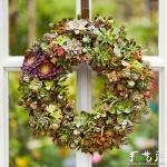 DIY漂亮多肉植物花环 装饰温馨家居生活