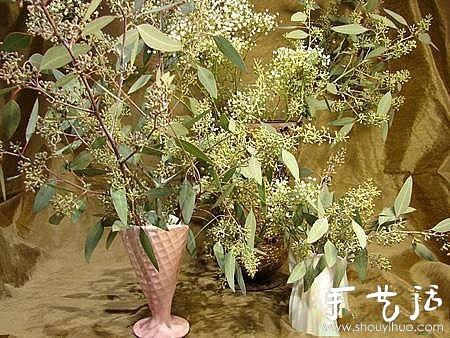 乾花製作方法 如何製作乾花