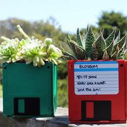 闲置磁盘废物利用 手工制作亮丽花盆