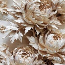 精美绝伦的纯手工花卉木雕作品