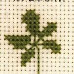 日本七叶树的十字绣绣法