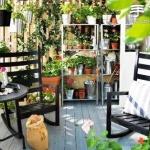给自家的阳台DIY一片菜地