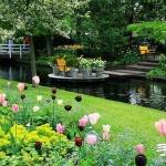 春季最美的花园——库肯霍夫公园