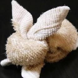 创意手工:用毛巾扎出一只兔子玩偶