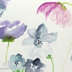 水彩画教程:教你各种漂亮花卉的水彩画
