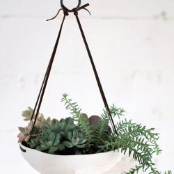 装饰现代风格家居的10款创意花盆盆栽