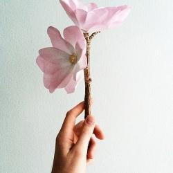 卡纸手工制作漂亮木兰花的方法图解教程