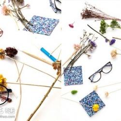 Etnia Barcelona 鲜花眼镜设计