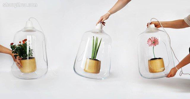 小盆栽玻璃燈罩 MILO BY LIGHTOVO