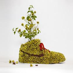 NIKE 球鞋创意DIY 变身漂亮小盆栽