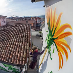 Mona Caron 野草壁画系列涂鸦作品