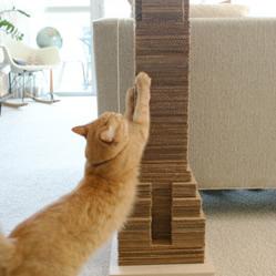 纸箱瓦楞纸板废物利用DIY制作猫咪磨爪器