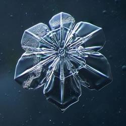 用自制微距相机 拍下超梦幻片片雪花雪晶