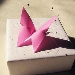 蝴蝶的折法步骤图 折纸蝴蝶教程步骤图解