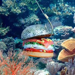 Fat & Furious 汉堡食谱 汉堡也可以搞笑