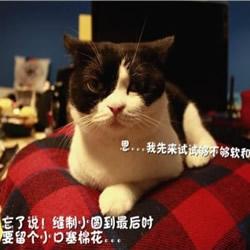 不织布手工制作舒适猫窝布艺图解教程