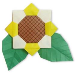 手工折纸太阳花的折法 太阳花折法图解教