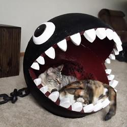 自制真实版利嘴链球猫床的方法教程图解