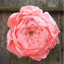 Tiffanie Turner的大型纸艺花卉作品欣赏