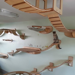 空中乐园般的猫爬架DIY 猫猫大人太幸福了