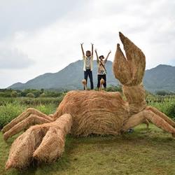 日本稻草艺术节 利用无用的秸秆制作大型雕塑
