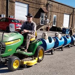 80岁老人打造遛狗列车 载着收养的流浪狗兜风