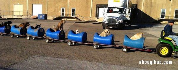 80歲老人打造遛狗列車 載着收養的流浪狗兜風