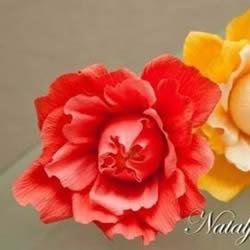 皱纹纸花的做法图解 手工皱纹纸花的折法