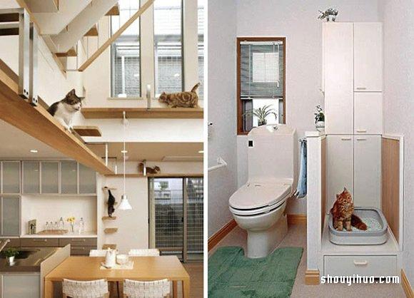 猫咪梦幻游乐园 将人类居所变成猫咪真正的归宿 -  www.shouyihuo.com
