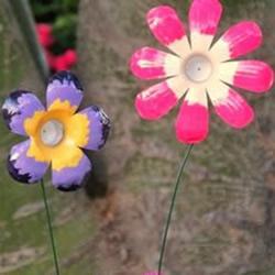 幼儿园花朵制作方法 矿泉水瓶做花朵的步