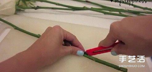 利用虹吸原理DIY制作彩虹玫瑰花的方法教程 -  www.shouyihuo.com