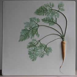 将花草和蔬菜放入陶土 制作出植物化石瓷砖