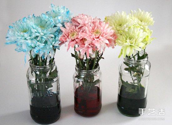 利用食用色素暈染鮮花的簡單科學小製作