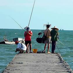 为什么会跑鱼 如何防止跑鱼现象的发生?