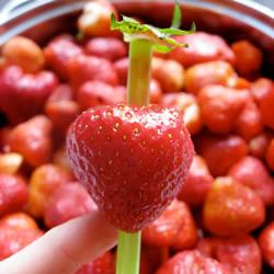 如何简单快速去除草莓蒂头 只要一根吸管就OK