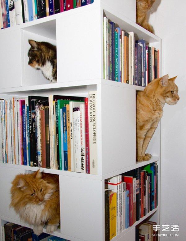 真正考慮到貓兒需求的躲貓貓小樂園產品設計