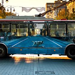 消失的无轨电车 车体广告变成趣味错觉艺术