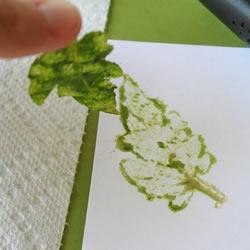 儿童叶脉画制作方法 简单手工叶脉画DI