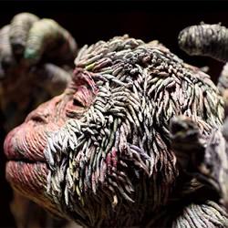 搔动灵魂的发梢 用报纸一根根搓揉的动物雕塑