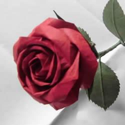 酒杯玫瑰折纸教程图解 怎么折酒杯玫瑰详