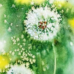 用盐和水彩画蒲公英的作品 带有油画般质感