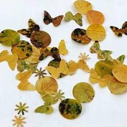 树叶贴画创意制作方法 用打孔器切出喜欢形状