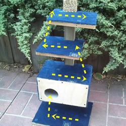 怎么自制猫爬架DIY教程 猫爬架制作方法步骤