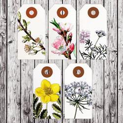 复古风花卉图案标签 简约分隔卡片设计图